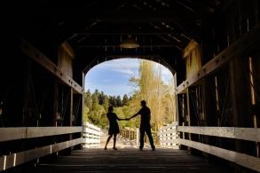 Engaged at Roaring Camp